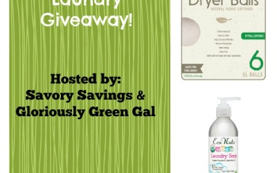 Did you see the Get Green with Laundry #giveaway? Enter to #win Eco Nuts natural laundry soap & Natural Choice Wool Dryer balls! (Ends Oct 29)