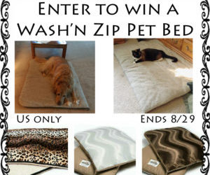 Wash'n Zip Pet Bed Giveaway ⚬ Congrats Tammy!