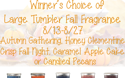 Yankee Candle Fall Fragrance Large Tumbler Giveaway ⚬ Congrats Vera!