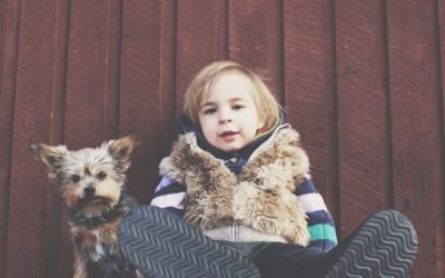 Thinking Of Getting A Family Pet? Read This First!