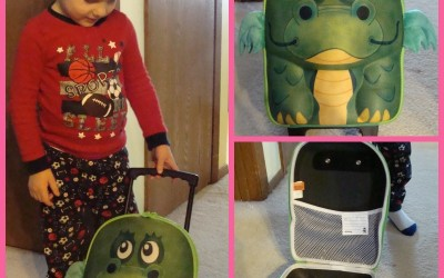 {Review} Okiedog Dragon Wildpack Trolley
