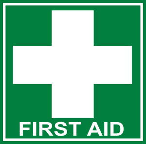 First Aid Tips for the Family