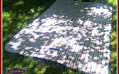 Just in time for #summer #picnics! My #review of the MIU Color Picnic Blanket!