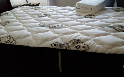 Finding a Place to Sleep: Our Mattress Buying Experience