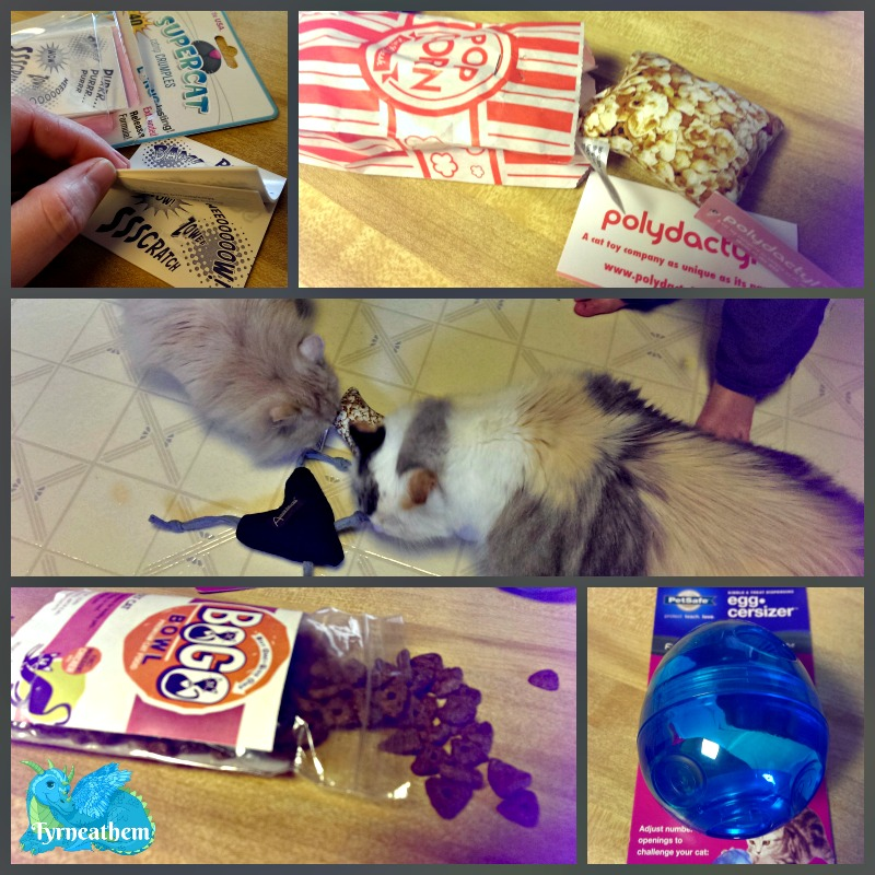 petboxcollage
