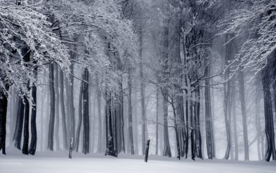 Long Winters: How To Deal With Grief Over Christmas