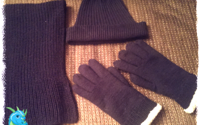 {Finished Object} My Sister-in-Law's Gloves