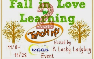ENDING SOON! Fall in Love w/ Learning #giveaway: Take Two! Another great chance to #win Teach My learning kits! (Ends Nov 22)