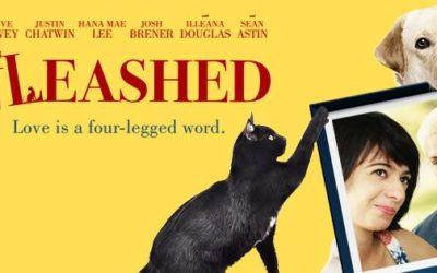 A Movie Review of Unleashed
